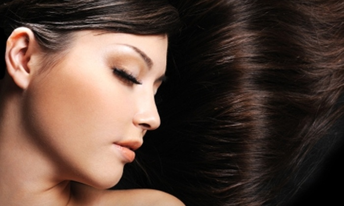 Salon Des Amis - Eden Prairie: $195 for a Brazilian Blowout and Hair-Maintenance Products at Salon Des Amis in Eden Prairie (Up to $470 Value)
