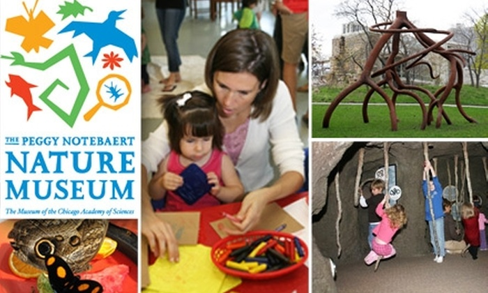 Peggy Notebaert Nature Museum - Lincoln Park: $27 for Family Membership to Peggy Notebaert Nature Museum ($60 Value)