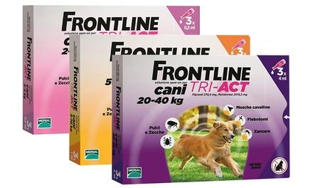 Trattamento Frontline Tri-Act Spot-On