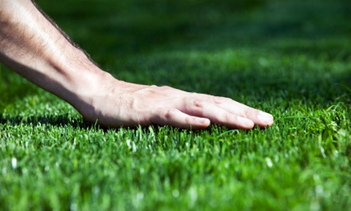 tgic Lawn Services - Indianapolis: $40 for a Fall or Spring Lawn-Aeration from tgic Lawn Services (Up to $80 Value)