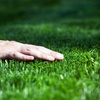 Up to Half Off Lawn Aeration from tgic Lawn Services
