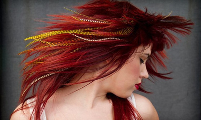 Kenny Cole Salon - West Dallas: Hair Services, Feather Extensions, or Fusion Extensions at Kenny Cole Salon
