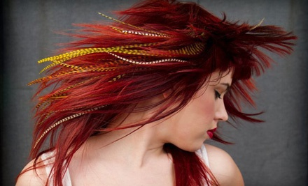 Kenny Cole Salon: 3 Feather Hair Extensions - Kenny Cole Salon in Dallas