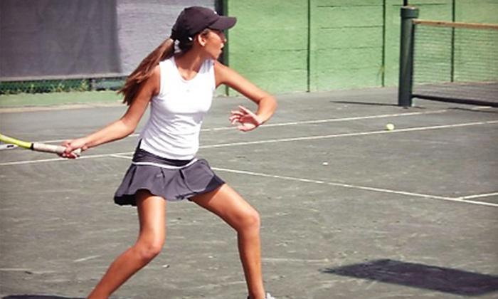 Deer Creek Tennis Resort - Deerfield Beach: Rental of Tennis Court and Ball Machine or Two Private Lessons at Deer Creek Tennis Resort in Deerfield Beach