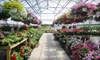 Froehlich's Farm & Garden Center - Buckingham: $15 for $30 Worth of Plants and More at Froehlich's Farm & Garden Center in Furlong