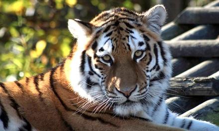 Paradise wildlife park deals 2018