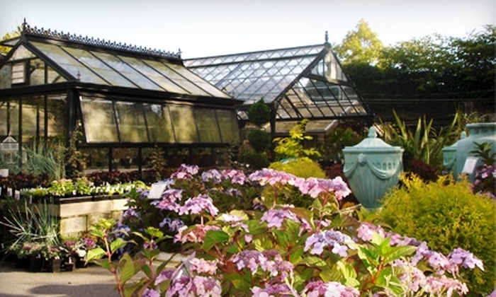 Southlands Nursey - Vancouver: $30 for $60 Worth of Plants and Garden Accessories at Southlands Nursery