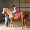 Half Off Horseback Riding Lessons