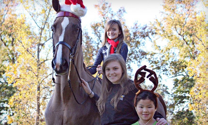 Fairhope Stables - Suwanee-Duluth: Two or Three Private Horseback-Riding Lessons or a Kid's Horseback Party for Up to 12 at Fairhope Stables in Duluth
