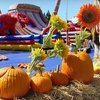 Up to 54% Off Pumpkin Patch and Rides