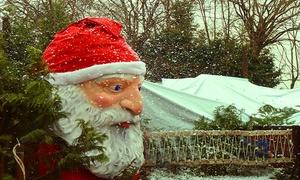 Aquaneva Christmas Village: Aquaneva Christmas Village dal 3 al 24 dicembre ingressi per adulto e bambino con cena e spettacolo (sconto fino a 58%)