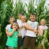 Up to 66% Off Corn Maze and Pumpkin Patch