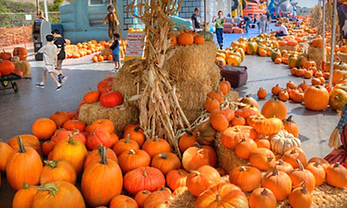 ABC Tree Farms - Multiple Locations: All-Day Outing for One, Two, or Four to Pick of the Patch Pumpkins at ABC Tree Farms