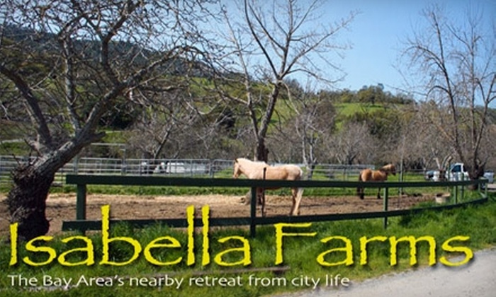 Isabella Farms - Tassajara: $139 for a One-Hour Horseback-Riding Lesson, One-Hour Stable Visit, and Three-Hour Trail Ride at Isabella Farms ($300 Value)