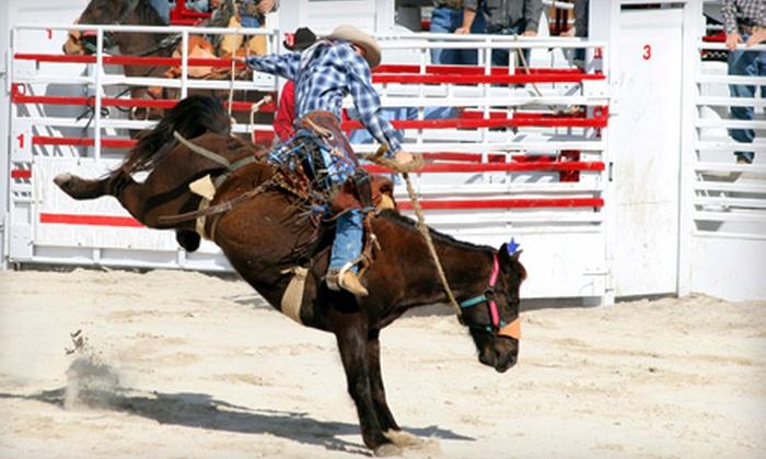 Calvin Allen Saddlery - Weatherford: Western Wear at Calvin Allen Saddlery in Weatherford