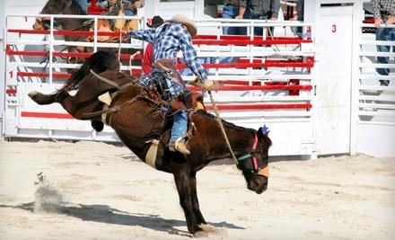 $20 Groupon to Calvin Allen Saddlery - Calvin Allen Saddlery in Weatherford