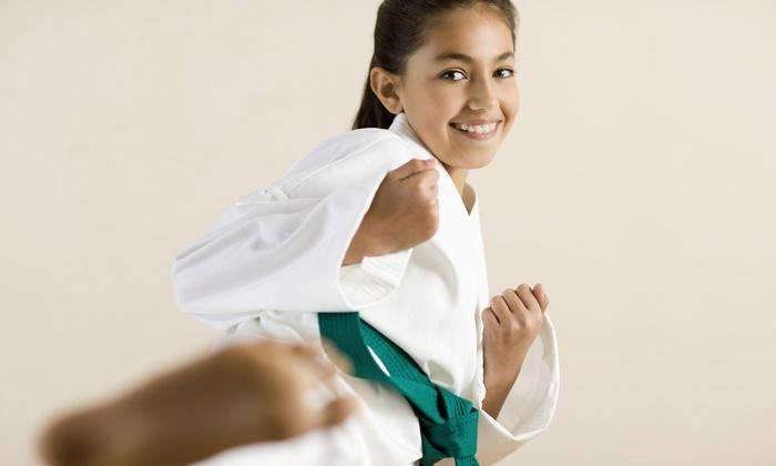 Tiger World Class Tae Kwon Do - Ellicott City: $20 for 10 Martial Arts Classes at Tiger World Tae Kwon Do ($179 Value)