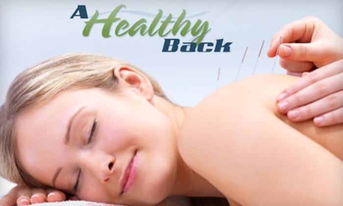 A Healthy Back - Terry Sanford: $49 for Exam and Acupuncture Session at A Healthy Back ($149 Value)