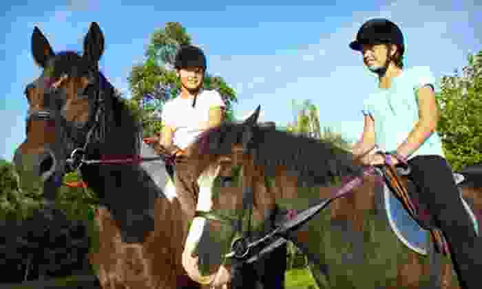 Earthquake Arabians - Tassajara: One, Three, or Five One-Hour Private Horseback-Riding Lessons at Earthquake Arabians (Up to 63% Off)