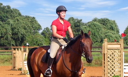 One 1-Hour Horseback-Riding Lesson (an $80 value) - Park Lane Equestrian Center in Dallas