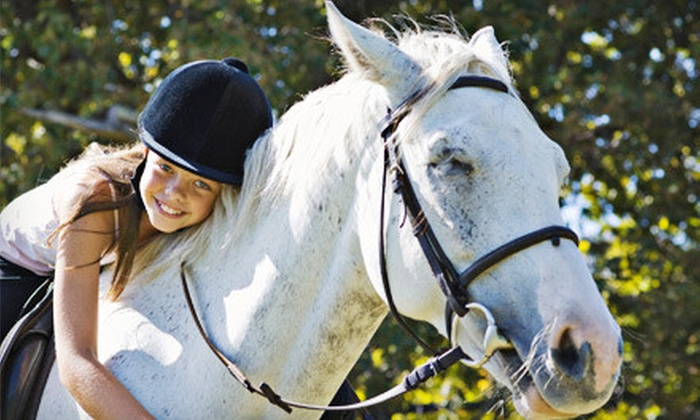 Libera Equus Showjumpers - Comfort: Two or Four Private Horseback-Riding Lessons at Libera Equus Showjumpers in Boerne (Up to 56% Off)