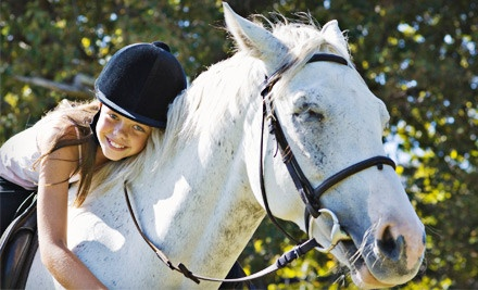 Two 60-Minute Private Horseback-Riding Lessons (a $100 value) - Libera Equus Showjumpers in Boerne