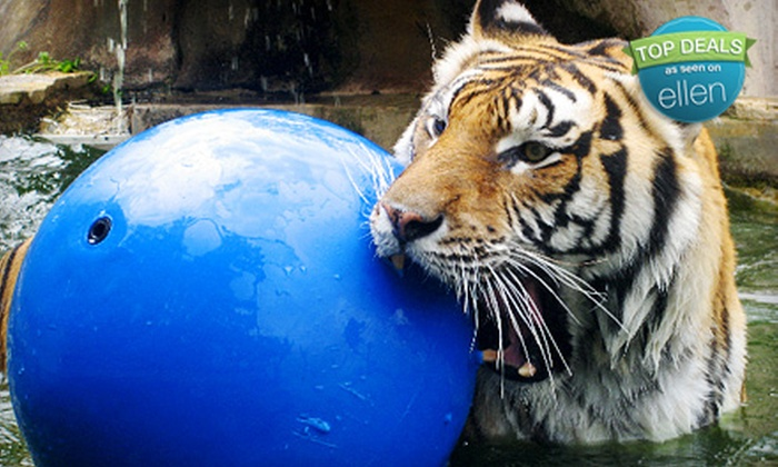 Austin Zoo & Animal Sanctuary - Austin: Zoo Outing for Two or Four with Feed to Give to Animals at Austin Zoo & Animal Sanctuary (Up to 56% Off)