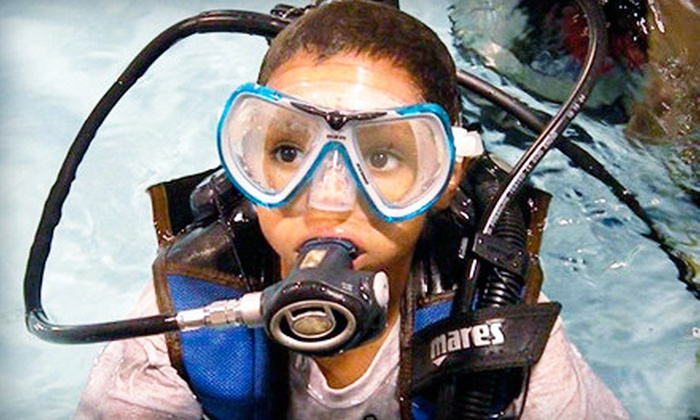 Central Coast Dive Center - Edgewood: Open-Water-Certification Program with Quarry Dives or Scuba-Discovery Class at Central Coast Dive Center (Up to 57% Off)