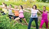 The Holden Arboretum - Kirtland: Visit for Two or Four, or Six Weeks of Yoga Classes at The Holden Arboretum (Up to 51% Off). Four Options Available.