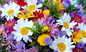 Shady Garden Garden Roll Out Flowers - Walter Drake