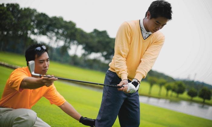 Bart Barnard Golf Academy - South Scottsdale: One or Three 60-Minute Private Golf Lessons atBart Barnard Golf Academy(60% Off)
