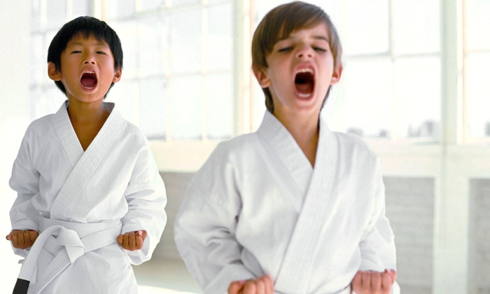 Kids Love Martial Arts - Roseville: 10 or 20 Classes with Initiation and Uniform at Kids Love Martial Arts (Up to 91% Off)