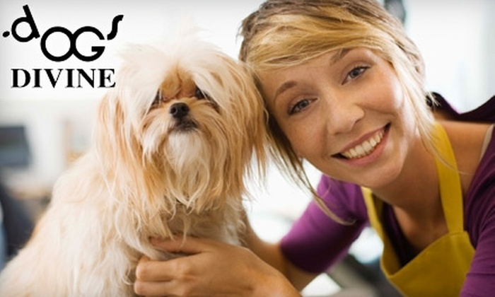 Dog's Divine Pet Grooming - Central St. John's: $25 for Up to $50 Worth of One Full-Service Grooming Session at Dog's Divine Pet Grooming