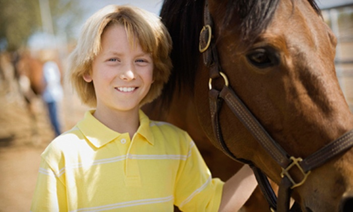 Schmidle Horsemanship - Clark: $40 for Two One-Hour Private Horseback-Riding Lessons at Schmidle Horsemanship in Troy ($80 Value)