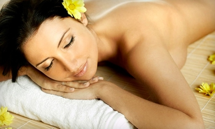 Body Alchemy Spa - Solana Beach: $49 for a Dermaplaning Treatment ($130 Value) or $79 for an Express Bleach and Peel ($175 Value) at Body Alchemy Spa