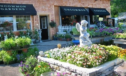 $40 Groupon to Uncommon Gardens - Uncommon Gardens in Minneapolis