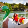 Up to 51% Off One Admission to Gilroy Gardens