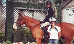 Marlowe Show Stables: One, Three, or Five Private English Horseback Riding Lessons at Marlowe Show Stables (Up to 59% Off)