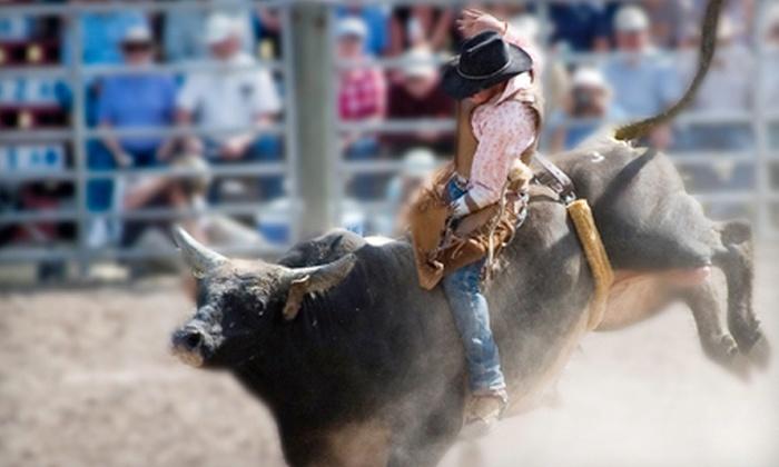 The San Antonio Stock Show & Rodeo - San Antonio: $10 for One Season Pass to The San Antonio Stock Show & Rodeo on February 9–26 ($20 Value)