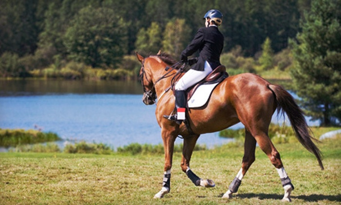 Legacy Stables - Mendon: Two or Four Private Horseback-Riding Lessons or a Riding Party for Up to 15 at Legacy Stables in Mendon (Up to 60% Off)
