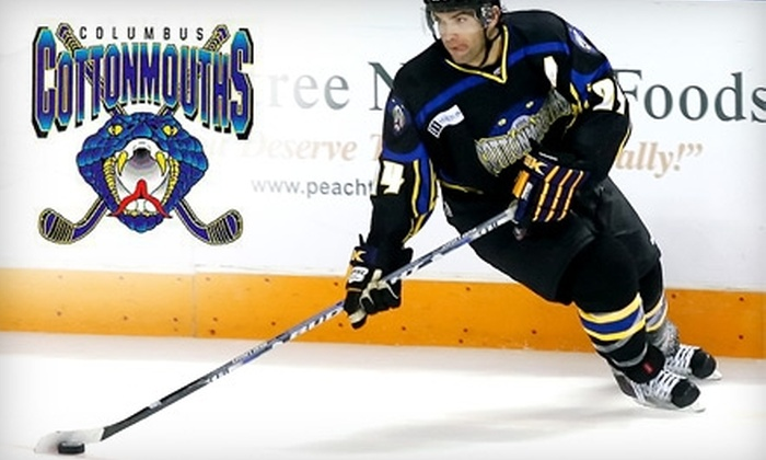 Columbus Cottonmouths - Columbus: $8 for a Lower-Level Ticket to the Columbus Cottonmouths vs. Knoxville Ice Bears Hockey Game on Sunday, February 20, at 4 p.m.