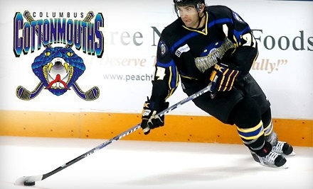 Columbus Cottonmouths: Columbus Cottonmouths Vs. The Knoxville Ice Bears on Sun., Feb. 20 at 4PM - Columbus Cottonmouths in Columbus