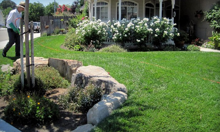 Team Green Lawn Fertilization and Weed Control - Fresno: $22 for a Basic Lawn-Care Package from Team Green Lawn Fertilization and Weed Control ($44 Value)