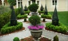 Bluum Outdoor Environments: $500 for $2,000 Toward a Custom Landscape Design from Bluum Outdoor Environments
