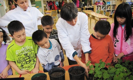 $10 Donation to Growing Chefs! - Growing Chefs! in