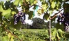 Corbin Farms Winery - Alabaster: Wine-Tasting Package for Two or Four at Vizzini Farms Winery in Calera (Up to 55% Off). Three Options Available.