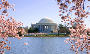 Up to 41% Off a DC Highlights Day Tour at USA Guided Tours, plus 3.0% Cash Back from Ebates.