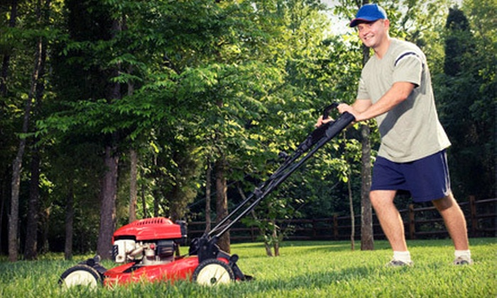 Petty's Clean and Green Lawn Care - New Orleans: Lawn-Care Maintenance with Optional Fertilizer and Weed Control from Petty's Clean and Green Lawn Care (Up to 58% Off)