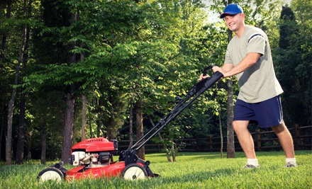 Basic Lawn-Care Package for Up to One 1/4-Acre ($45) Including Weeding, Edging and Blowing and Basic Lawn Cleanup  - Petty's Clean and Green Lawn Care in