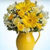 Up to 54% Off at #1 Flowers and Gifts